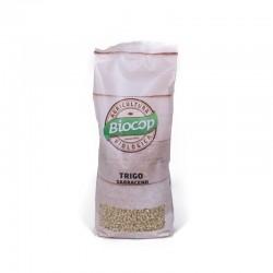 TRIGO SARRACENO 500GR BIOCOP